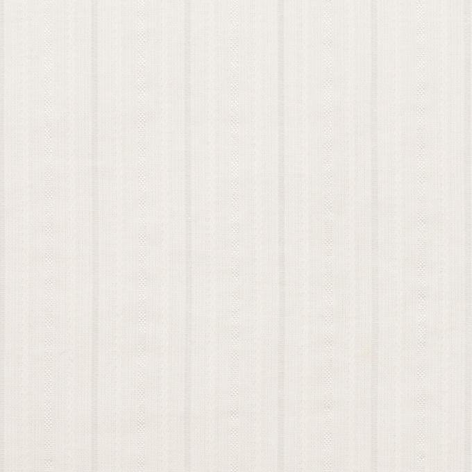 コットン&ナイロン×ストライプ(オフホワイト)×サッカージャガード イメージ1
