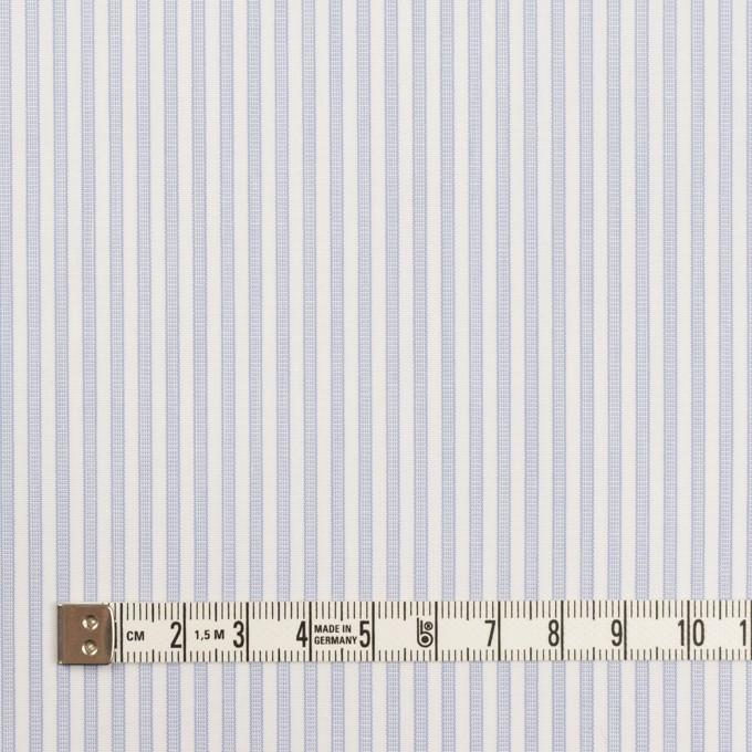 コットン×ストライプ(ペールブルー)×ブロード イメージ4