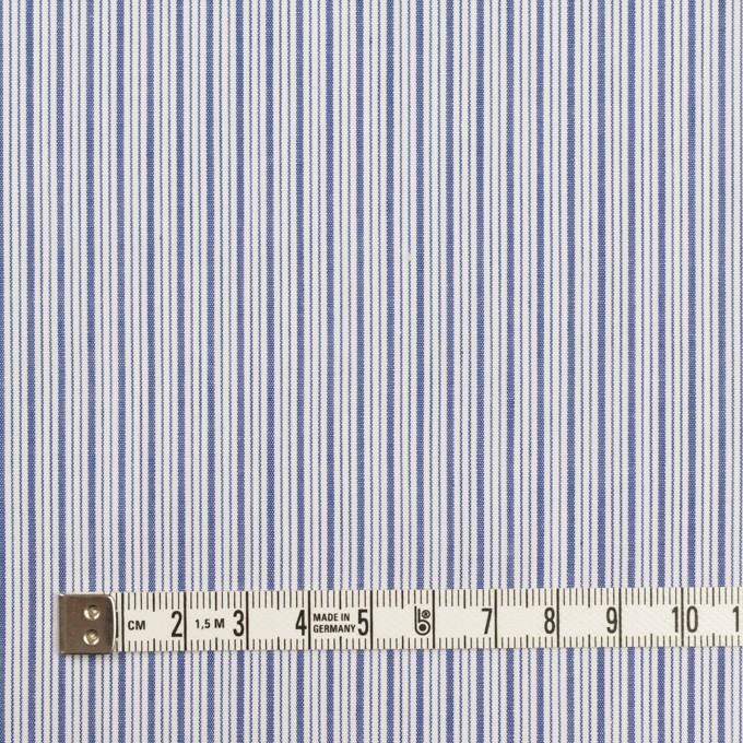 コットン×ストライプ(アッシュブルー)×ブロード イメージ4