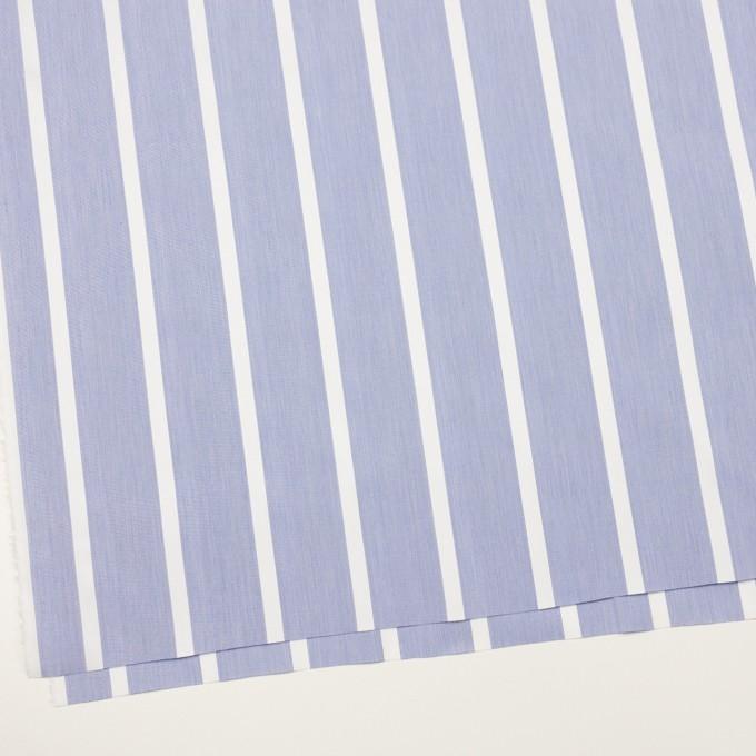 コットン×ストライプ(ブルー)×ブロードジャガード イメージ2