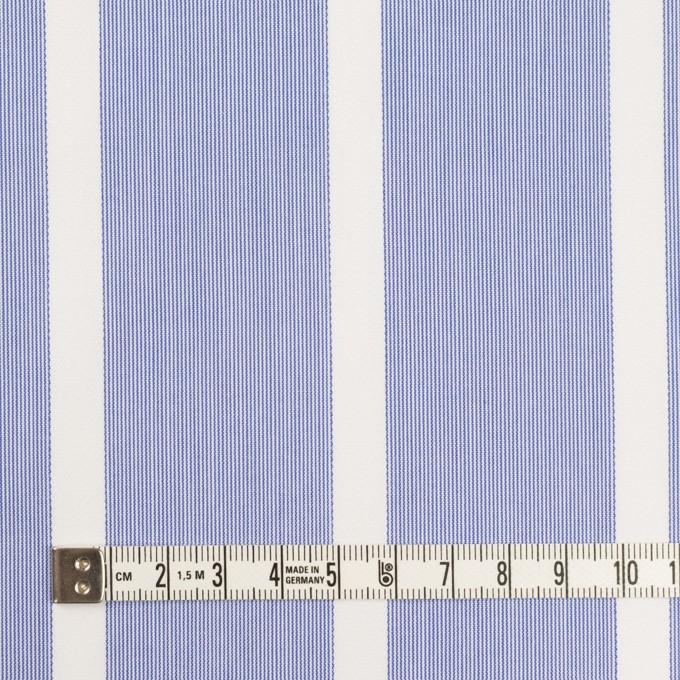 コットン×ストライプ(ブルー)×ブロードジャガード イメージ4