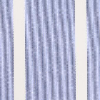 コットン×ストライプ(ブルー)×ブロードジャガード