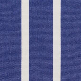 コットン×ストライプ(マリンブルー)×ブロード サムネイル1