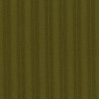 コットン×ストライプ(カーキグリーン)×シーチングドビー サムネイル1