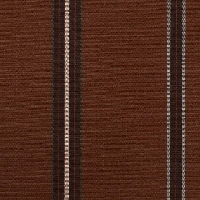 コットン×ストライプ(マホガニー)×ブロード イメージ1